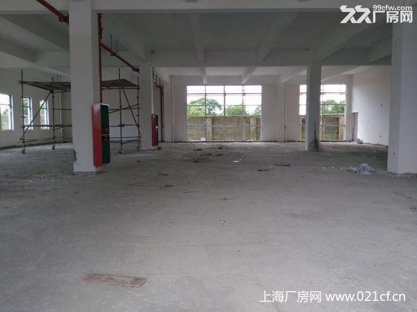 G1663【12月份空出】 青浦工业园区稀缺104版块高平台仓库出租
