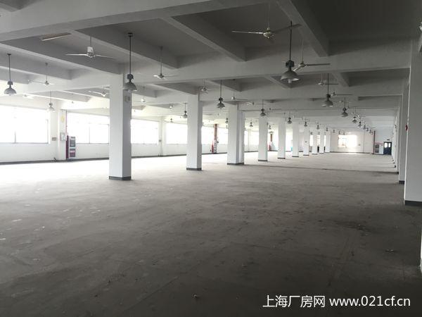 G1665 青浦练塘工业园区104板块 三丰路厂房出租 50平米起租 可仓储和生产