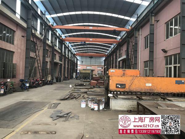 G1666 浦东 泥城镇配20吨行车单层厂房仓库出租 可分割出租 物流电商机械生产等