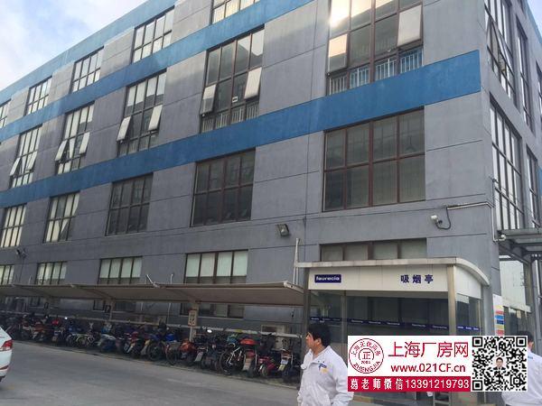 G1668 嘉定区外冈镇 西冈身路 2100平单层可装行车、二楼3300平、一楼1000平、二楼280平厂房仓库出租